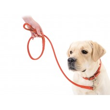 Collar Glamour Red Leash