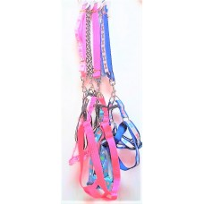 Assorted Leash W harness